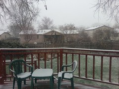March 25, 2015 - A quick shot of snow in Thornton. (LE Worley)
