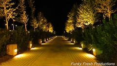 IMG_1097 (radical239) Tags: street night canon lights colours greece macedonia thessaloniki   sx220hs thessalonikinightlife