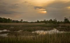 evening on the lake ... (proffkom_) Tags: vintage asahi takumar ukraine m42 analogue manual smc  bukovina  retrolens