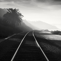 san diego : del mar train tracks (William Dunigan) Tags: ocean california white mist black tree beach fog del clouds train sunrise photography coast mar san tracks diego sunny william cliffs palm southern coastal region dunigan