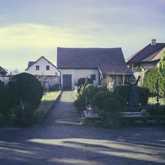 Small paradise (verblickt) Tags: film garden fujifilm rolleicord fujicolor colornegative