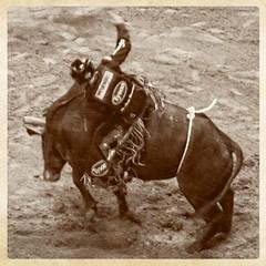 No Chicken (brev99) Tags: blackandwhite blur cowboy border bull motionblur pbr tone bullrider d90 texturizer bokcenter ononesoftware topazdenoise topazdetail tamron28300xrdiif perfecteffects9 perfectphotosuite9