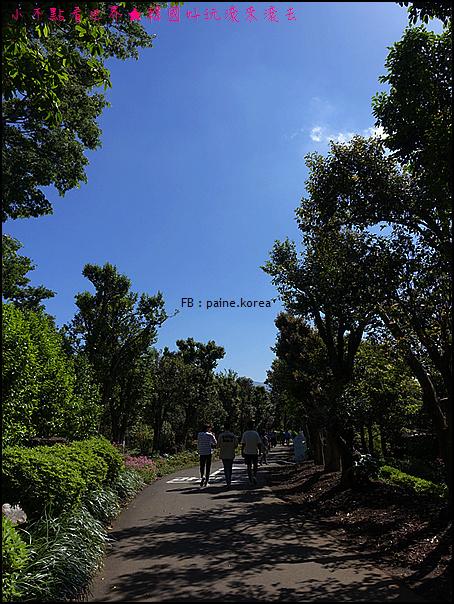 濟州山茶花庭院 (6).JPG