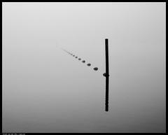_DSF0406-Edit.jpg (jezqio) Tags: lines minimalism netherlands monochrome xf1655 blackandwhite minimal fog misty fujifilm mist