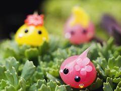 Succulent Alpine Exploration (Jam-Gloom) Tags: cute japan toy toys olympus cheeks chan kawaii omd japanesetoy hoppe toyphotography em5 cutetoy toyography kawaiitoy olympusomd olympusomdem5 hoppechan cheekschan