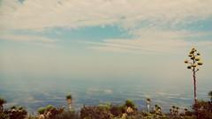 La magia de este lugar hace que veamos laa vida de otraa forma....     #misviajesmexicodesconocido #travel #traveling #visitmexico #mexicodesconocido #mexicotravel  #descubriendomexico #cute #visiting #viajar  #viajeros #amazing #mexico  #turis (Diego (viajandosinrumbofijo)) Tags: travel cute mexico amazing traveling visiting turismo viajar aventura viajeros visitmexico mexicotravel mexicodesconocido descubriendomexico mextagram misviajesmexicodesconocido
