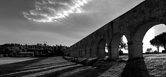 Acqueduct Arches (G. Vasari) (filippogatteschi) Tags: acqueduct acquedotto vasariano giorgio vasari arezzo tuscany architectural bw black white architettura archi arches contrast highlights photomerge history stone building water pipe monument landmark ancient reinassance rinascimento art beauty hills landscape shadows canon eos 70d tamron 2470 24 70 grass italy travel journey perspective