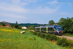 ME 85 TI (Andrea Sosio) Tags: ale501 ale502 85 minuetto alstom regionale reg 4492 ferroviedellostato trenitalia treno train salelanghe ceva piemonte italia nikond60 andreasosio