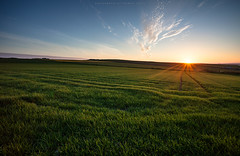 Ending day at Greens (Premysl Fojtu) Tags: uk sunset summer sky sun green nature beautiful field june clouds rural canon skyscape landscape island eos evening scotland countryside orkney colours country wideangle calm clear land dreamy crops fullframe dslr breathtaking mainland dreamscape 2016 ef1740 toab 5dmkii