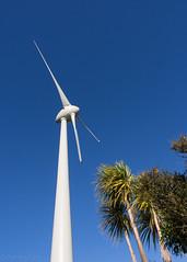 Day 184 Wind Turbine (hmxhm) Tags: newzealand nature olympus wellington aotearoa windturbine zealandia