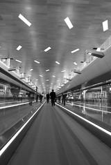 P1050117 (tyler.langenbrunner) Tags: airport international hamad
