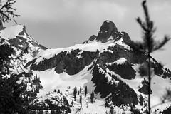 mountain (discreet*(:[ )) Tags: mountain 7d mark ii canon tamron f456 70300mm discreet dof depth field photooftheday photography photo park pine white black