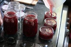 Making Jam (Benn Gunn Baker) Tags: benn gunn baker canon 550d t2i bristol greengage jam jars pans cooking breakfast conserve fruit fruits mixed kitchen homemade