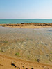 take a break, find some shells, breathe the fresh air – Qeshm, Iran (mohn_nika) Tags: ocean sea beach canon iran qeshm canonpowershotg11