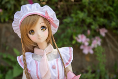 sweets chef mirai! (RazzyBJD) Tags: smart ball doll dream bjd dd dollfie volks abjd jointed smartdoll