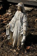 1695 the virgin known as Mary (Violentz) Tags: statue catholic god madonna mary religion jesus mother stjoseph galilee icon holy virgin jew bible christianity bethlehem virginmary blessed babyjesus nazareth motherofgod ourladyofguadalupe ourlady blessedmother holymother hailmary ourladyoflourdes israelite ourladyofgrace ourladyoffatima lawnstatue thevirginknownasmary thetheotokos handmaidenofthelord heymarywatchagonnanamethatprettylittlebaby miriammotherofisa