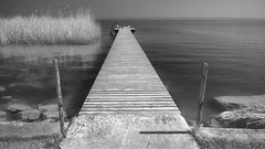 I'm just gon' sit at the dock of a bay Watchin' the tide roll away (Salvatore Furia [pellicolosa-mente]) Tags: