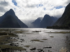 "Milford Sound <a style=""margin-left:10px; font-size:0.8em;"" href=""http://www.flickr.com/photos/83080376@N03/16582252349/"" target=""_blank"">@flickr</a>"
