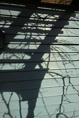 Shadows on the Wall (lefeber) Tags: sunlight house newyork wall architecture rural town shadows village angles vine trellis smalltown eveninglight hudsonvalley highlandfalls
