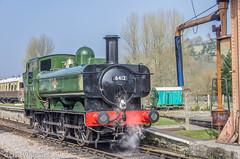 6412 Buckfastleigh 19.03.15 (Chris W Brown) Tags: heritage sdr transport rail railway steam wr preservation gwr steamlocomotive buckfastleigh panniertank 6412 southdevonrailway