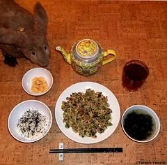 Seara (sea rabbit). Photo by Dr. Takeshi Yamada. 20120306 010b. Stir Fried Chicken & Vegetable. Steamed Rice with Black Sesami Seeds. Wakame Soup. Sweet Butter Beans. OOlong Tea. (diningwithsearabbits01) Tags: ny newyork sexy celebrity art hat fashion animal brooklyn painting asian coneyisland japanese star costume tv google king artist dragon god cosplay manhattan wildlife famous gothic goth performance pop taxidermy cnn tuxedo bikini tophat unitednations playboy entertainer takeshi samurai genius mermaid amc mardigras salvadordali unicorn billclinton billgates aol vangogh curiosities sideshow jeffkoons globalwarming takashimurakami pablopicasso steampunk yamada damienhirst cryptozoology freakshow barackobama seara immortalized takeshiyamada museumofworldwonders roguetaxidermy searabbit ladygaga climategate minnesotaassociationofroguetaxidermists  leonardnimoyfood