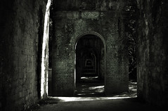 Aqueduct (Seeing Visions) Tags: trees light shadow brick monochrome japan architecture kyoto arches aqueduct jp beneath 2009 nanzenji raymondfujioka