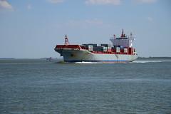 Meta (larry_antwerp) Tags: netherlands ship meta nederland vessel schelde  schip   hulst    walsoorden   9232747
