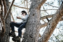 On the tree (..Gio..) Tags: tree climbing treeclimbing afszoomnikkor2470mmf28ged