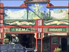 Hemp Embassy (Meremail) Tags: colour grass hemp nimbin