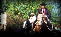 Agrupacin Gauchos de Ayacucho (Eduardo Amorim) Tags: horses horse southamerica argentina criollo caballo cheval caballos cavalos pferde cavalli cavallo cavalo gauchos pferd ayacucho chevaux gaucho cavall  amricadosul gacho amriquedusud provinciadebuenosaires  gachos  sudamrica suramrica amricadelsur sdamerika crioulo caballoscriollos criollos  buenosairesprovince americadelsud crioulos cavalocrioulo americameridionale caballocriollo eduardoamorim cavaloscrioulos