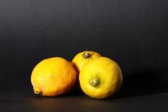 20160627 Citrus (Martijn van Veelen) Tags: lemon live stilllive citrus stil