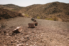 5R6K2855 (ATeshima) Tags: arizona nature havasu