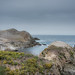 nesting (nosha) Tags: ocean california ca blue sea seascape water beautiful beauty landscape coast nest shore lobos pointlobos avian nesting