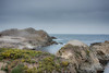 nesting (nosha) Tags: ocean california ca blue sea seascape water beautiful beauty landscape coast nest shore lobos pointlobos avian nesting