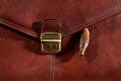 Briefcase (Apionid) Tags: brown leather luggage slug briefcase werehere day165366 hereios 13jun16 366the2016edition 3662016