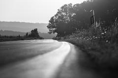 Strasse nach Nenderoth (andyllurg) Tags: strasse morgens nenderoth arborn