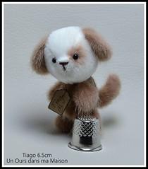 tiago chiot d'artiste miniature (marinaphoto17) Tags: bear dog chien puppy miniature artist teddy handmade ooak mohair chiot