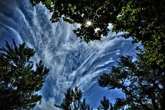 L'effondrement qui vient... The that has just collapse... (ImAges ImprObables) Tags: soleil crest ciel nuage commune arbre ville citation hannaharendt drme traitement rhnealpes darktable fujixs1