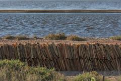 DSC_6077 (Pasquesius) Tags: sea island mare lagoon tiles sicily laguna saline sicilia saltponds isola marsala tegole mozia mothia stagnone motya riservanaturaledellostagnone