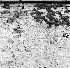 () Tags: sea blackandwhite bw 6x6 film window zeiss kodak hasselblad  portra    160 80mm romanticism