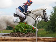 P1270561 (serita.vossen) Tags: horse horses eventing cross jumping paarden emmeloord ruiters amazones