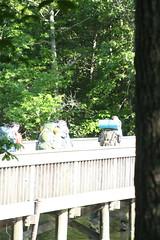 IMG_4471 (lojackr) Tags: nolandtrail t200 hike