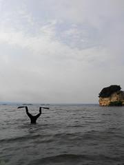 C360_2016-07-24-15-15-47-340.jpg (d3_plus) Tags:  drive fish  apnea izu sea smartphone j4  underwater   watersports hokurikuregion android  japan notojimaisland dolphin kyocera scenery torqueg02   au skindiving       snorkeling seaofjapan dolphinswim fishingport diving   marinesports kyv35  ishikawapref  sky   port