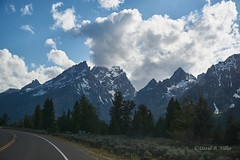 DSC03144 (pezlud) Tags: tetons tetonsviewedthroughpines landscape mountains