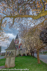 under tree 1 St Thomas.jpg (Ryan Dyck) Tags: longexposure pink blue trees red brown white canada abstract black green art church yellow night clouds photoshop wow spectacular photography lights amazing worship aqua artist branch bc cross bell god branches ministry jesus creative trails lord holy wires hdr services orton cherrytrees chilliwack lightroom santuary steple 2015 conceptural ryandyckphotography saintthomasanglicanchurch