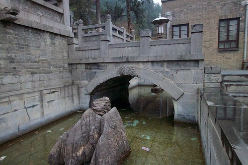 Pond of freeing captive animals (放生池, fàngshēng chí)