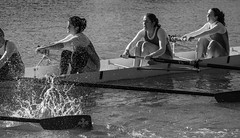 Torpids on the River Thames (Bruce Clarke) Tags: winter bw water river boat spring olympus oxford rowing blade riverthames isis magdalen oars torpids eights m43 bumping 75300mmii omdem1