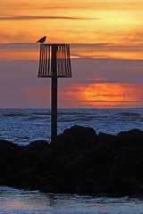 Millennium Coastal Park, Llanelli 1 (John Ibbotson (catching up!)) Tags: park sunset sea sun beach silhouette wales coast seaside sundown cymru millennium llanelli coastal