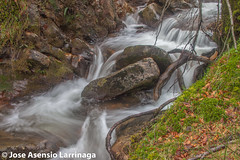 Parque Natural de Gorbeia  2015  #DePaseoConLarri #Flickr  -043 (Jose Asensio Larrinaga (Larri) Larri1276) Tags: naturaleza montaa euskalherria basquecountry 2015 efectoseda parquenaturaldegorbeia orozkobizkaia parquenaturaldegorbeiagorbea