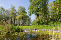 Photo of In the Retreat Centre gardens - fish pond and log seat